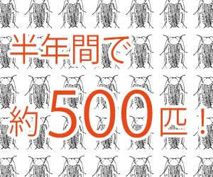 ゴキブリの卵-孵化期間-何匹生まれる--駆除方法-増殖-画像2