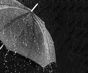 水を弾かない傘を復活させる方法-画像2