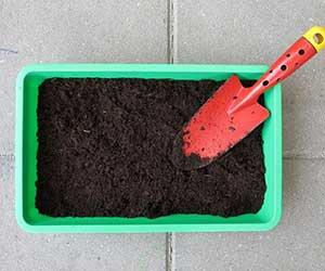 プランター-家庭菜園-初心者-基礎知識-画像2