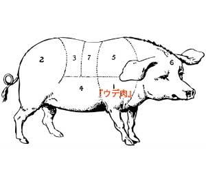 ひき肉-何肉-どこの部位-画像