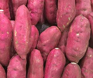 見分け方-ブドウ-カボチャ-追熟する果物-追熟しない果物-サツマイモ-画像2
